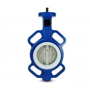 Butterfly valve, throttle DN100 - PTFE, stainless steel